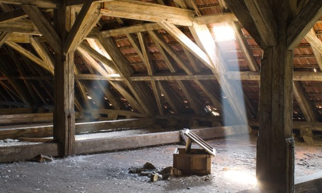 Top 5 Signs You're In Need of A Professional Attic Cleaning